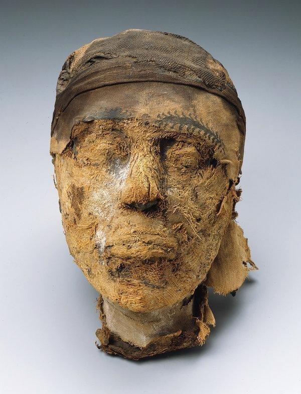 В 1921 году часть найденного, включая голову, была отправлена в Музей изящных искусств в Бостоне, США, который спонсировал экспедицию. Однако туловище осталось в Египте в мире, люди, мумия, найка, находка, фбр
