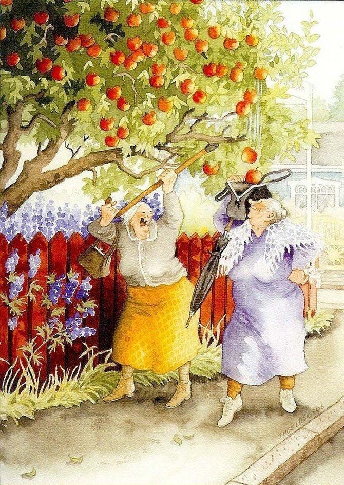 Яблоки. бабушки, открытки, позитив, старушки