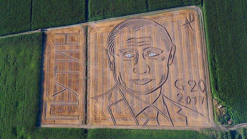 Портрет на на поле площадью 25 тыс. кв. м. искусство, поклонники, портреты, путин, умельцы