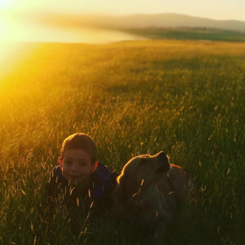 Фотоподборка за 05.04.2018 день, животные, кадр, люди, мир, снимок, фото, фотоподборка
