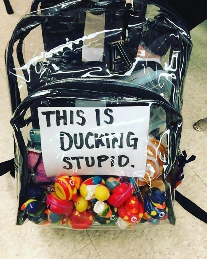 Школьников обязали носить прозрачные рюкзаки: что из этого вышло ynews, безопасность, нововведения, флорида, школа