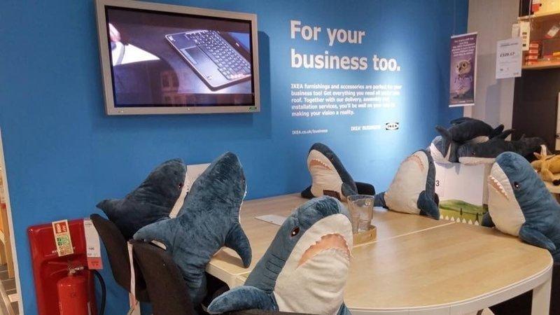 2. Особенно им свойственен коллективный труд акула, животные, игрушка, икея, прикол, юмор