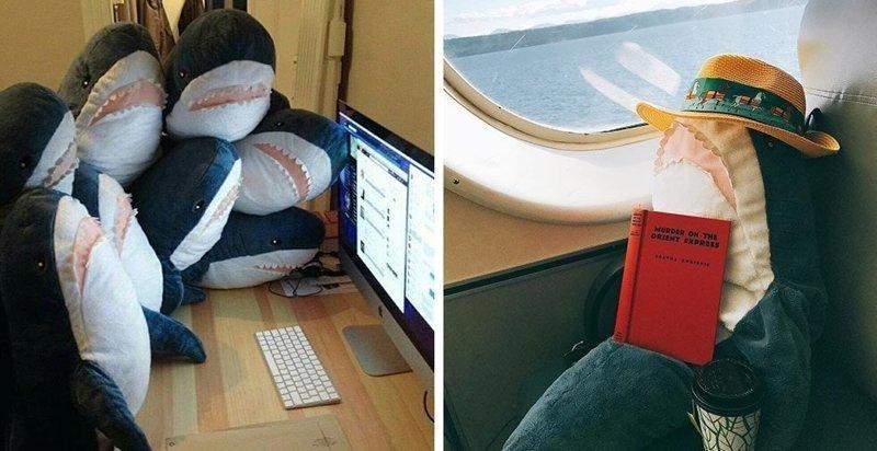Эти плюшевые акулы из Икеи заполонили интернет. А всё потому что они живут на всю катушку! акула, животные, игрушка, икея, прикол, юмор