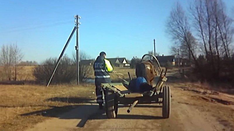 Гужевая повозка на автопилоте! Лошадь везла пьяного хозяина домой авто, видео, гаи, гибдд, гужевая повозка, инспектор, прикол, пьяный за рулем