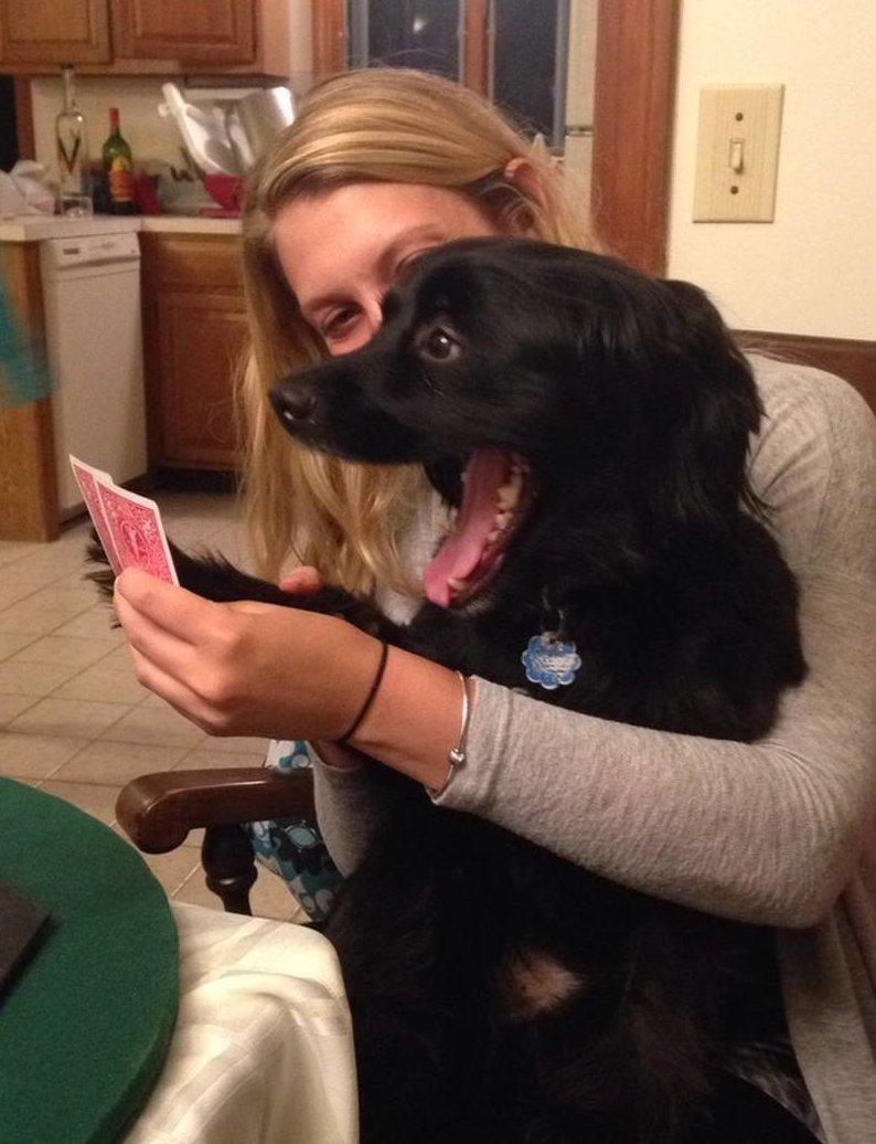 4. Когда не можешь скрыть эмоции от хороших карт  азартные игры, девушки, интересно, покер, покерный стол, фото, юмор