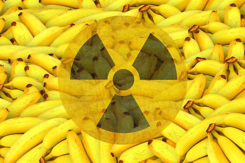 А еще есть в некоторых продуктах радиация - чаще всего, это грибы и ягоды, а также рыба непроточных водоемов интересное, насекомые, питание, продукты, содержание, факты, фекалии. крысы