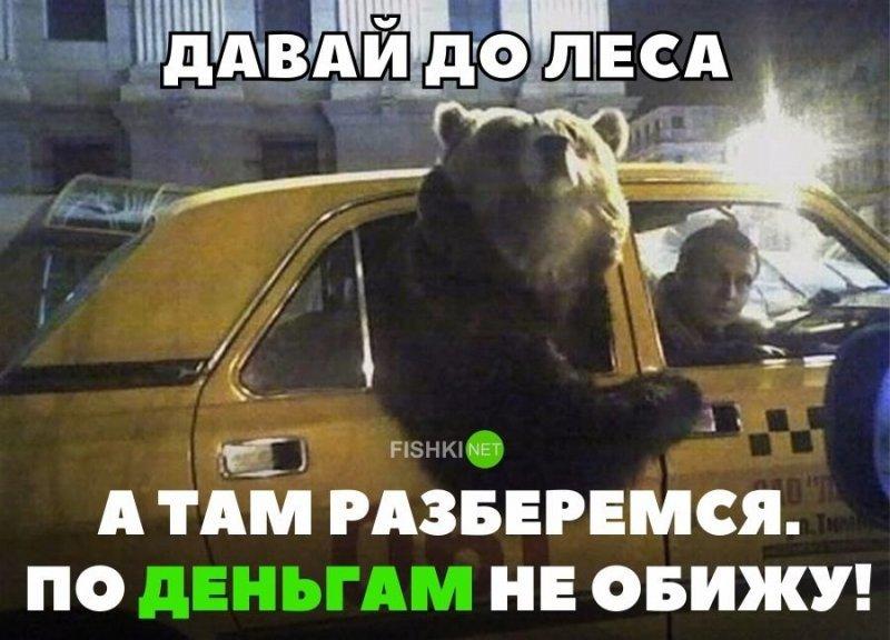 Давай до леса, а там разберемся. По деньгам не обижу! авто, автомобили, автоприкол, автоприколы, подборка, прикол, приколы, юмор