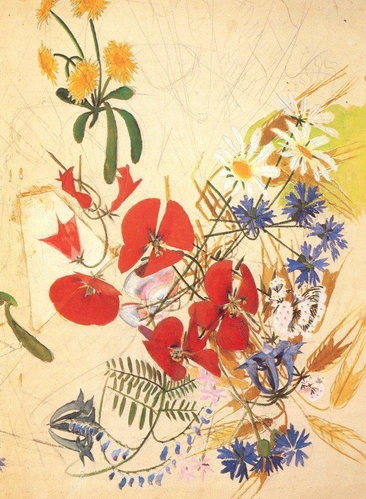 Полевые цветы, 1884 Врубель, биография, великие имена, искусство, картины, керамика, творчество, художник