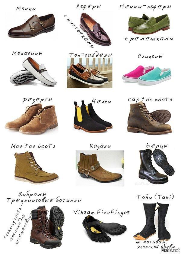 предложениями женская обувь разновидности с фото и названиями счет