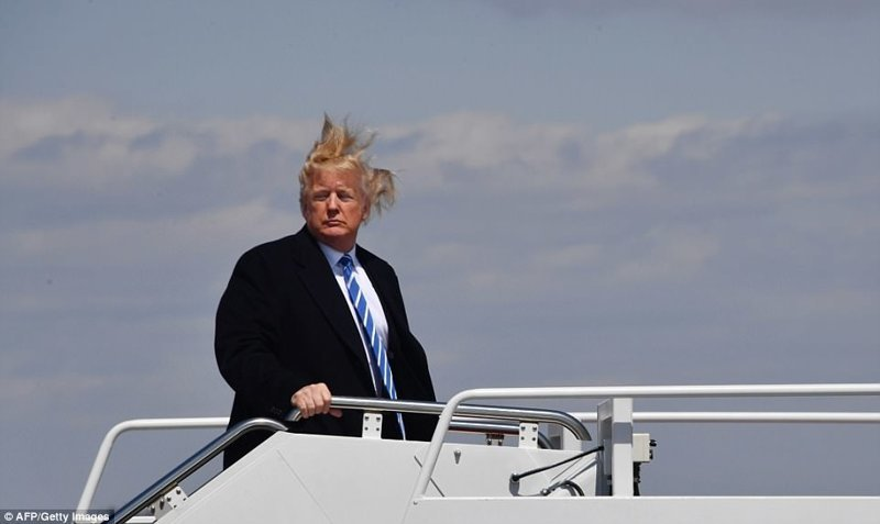 Прическа Дональда Трампа уже неоднократно становилась предметом обсуждений и различных мемов Дональд Трамп, Обсуждения, Трамп, волосы, президент, президент сша, прическа, фото
