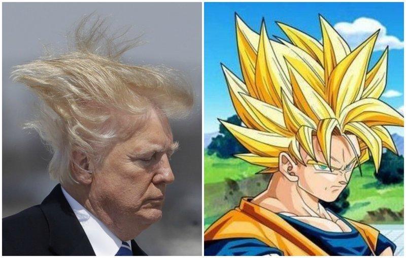 Подоспели сравнения Дональд Трамп, Обсуждения, Трамп, волосы, президент, президент сша, прическа, фото
