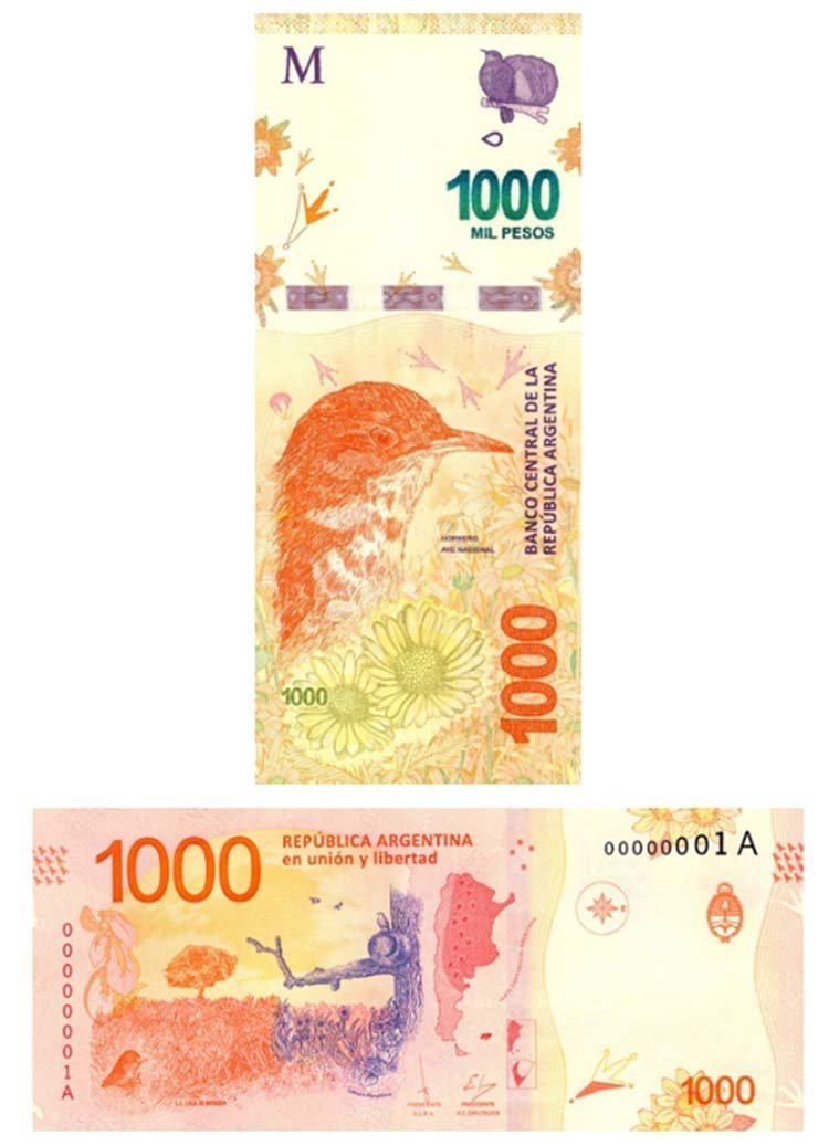 1000 песо (Аргентина) в мире, денежная банкнота, деньги, купюра, рисунок