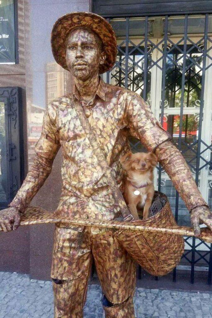 Вот как выглядит настоящая собачья работа! в мире, животные, люди, работа, собака
