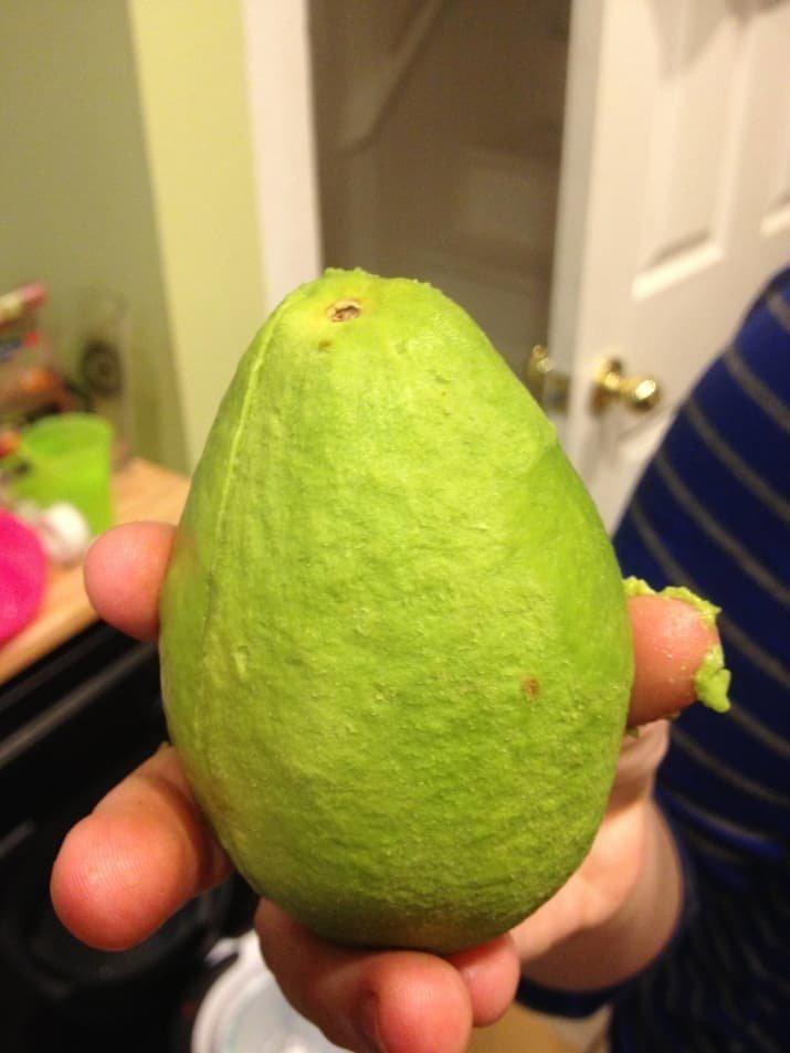 14. Целиком очищенное авокадо Вопрос ребром, восприятие, кожура, овощи, очищенные, фрукты, фрукты и овощи, ягоды