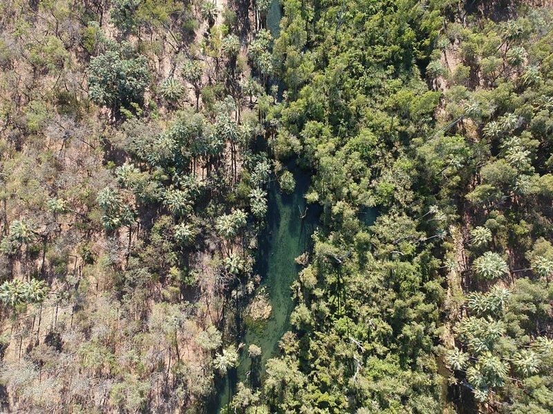 А вот тут хорошо видно, как вода влияет на рост флоры австралия, в мире, животные, люди, природа, путешествие