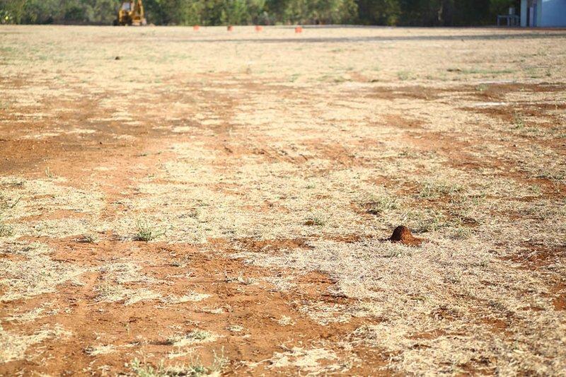 Взлётно-посадочная полоса в поселении. За ночь термиты построили небольшие бугорки, которые по утрам трамбуют внедорожником австралия, в мире, животные, люди, природа, путешествие