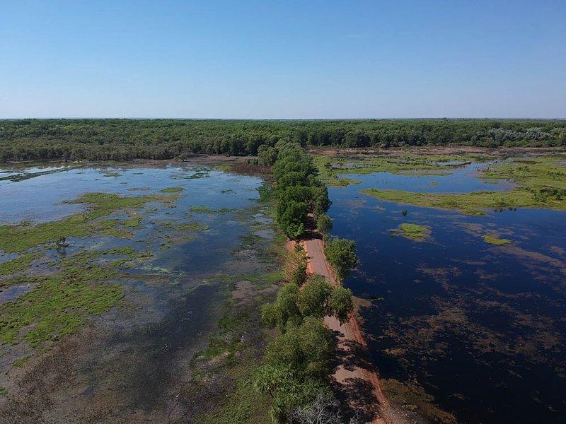 Австралия: небольшая реколонизация Земли австралия, в мире, животные, люди, природа, путешествие