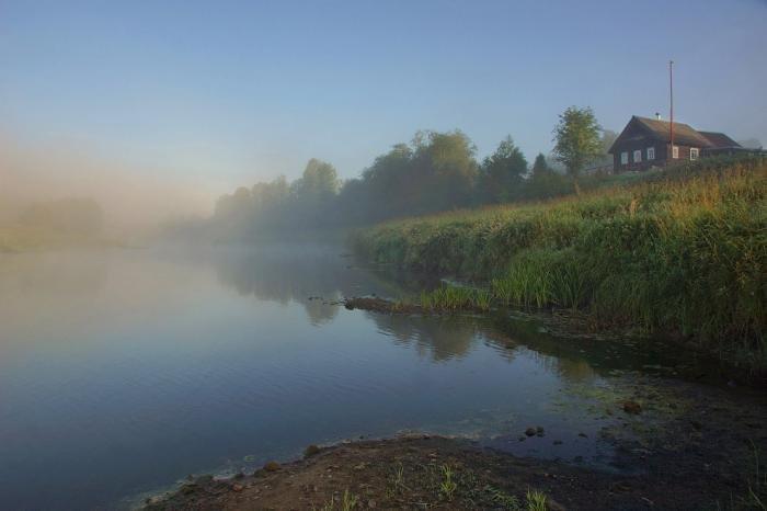 Вепсский лес Вепский лес, Ленинградская область, природа, туризм