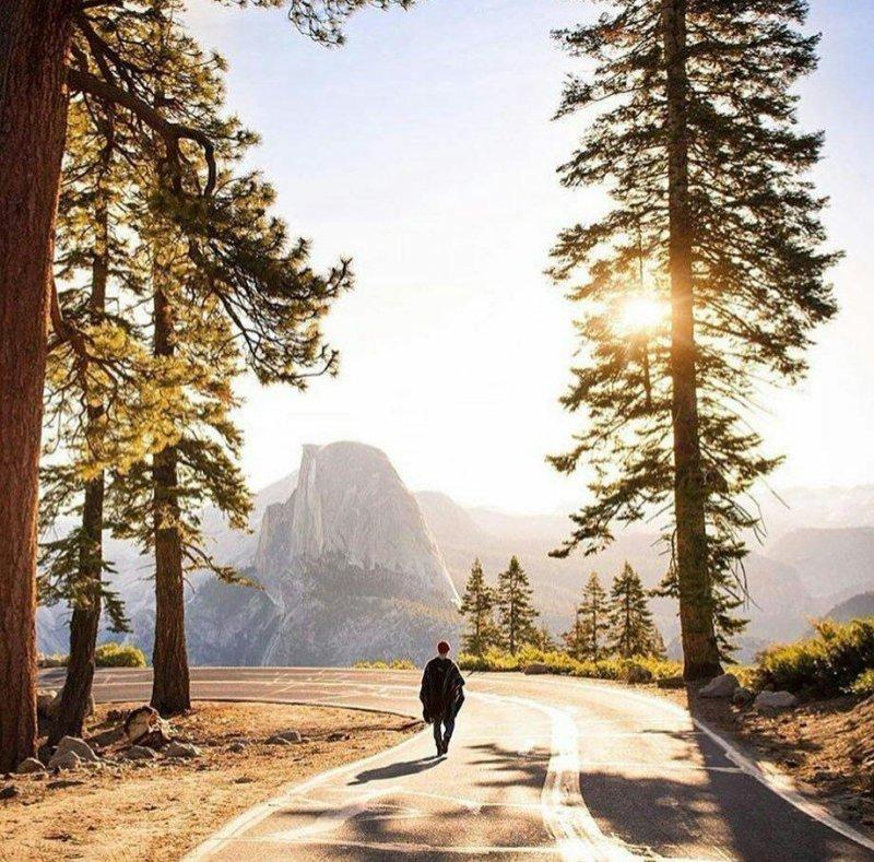 Прогулка по Йосемити день, животные, кадр, люди, мир, снимок, фото, фотоподборка