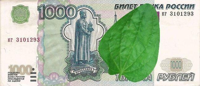 Гильдия фотошопа пыталась вернуть старый курс, но ничего из этого не получилось Дерипаска, доллар, евро, прикол, путин, рубль, санкции, юмор