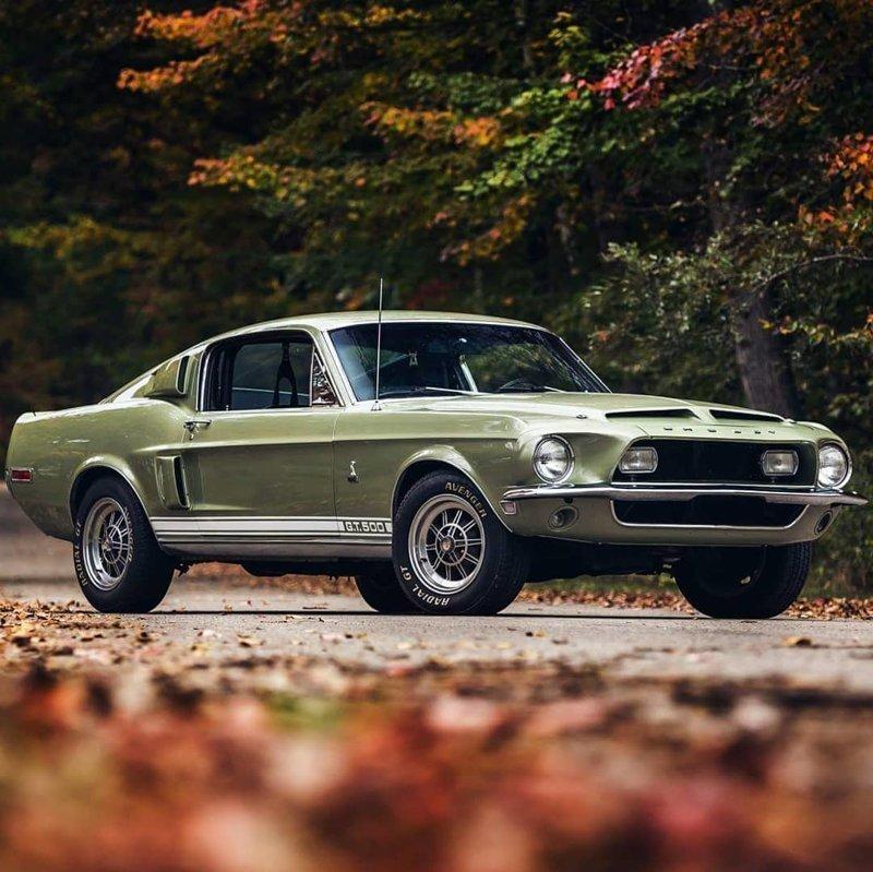 1968 Ford Mustang SHELBY GT500 автомобили, маслкары, машины, старые машины