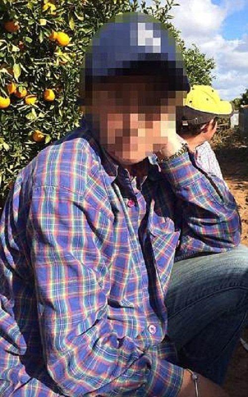 История одной семьи, потрясшая Австралию Новый Южный Уэльс, австралия, дети в опасности, дурное воспитание, инцест, родственные связи, семья, семья Кольт