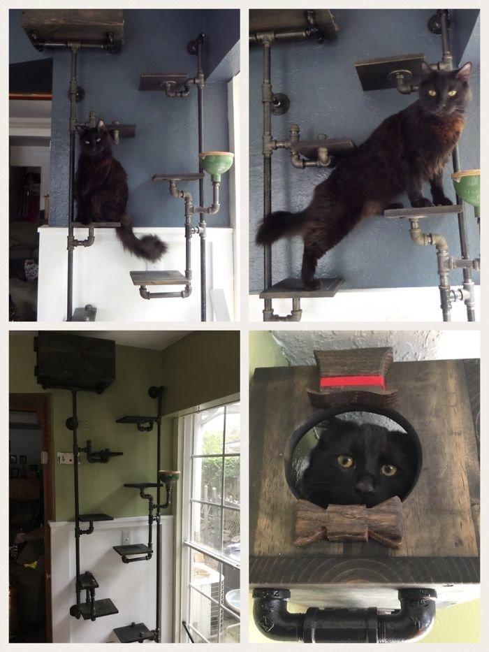2. Сооружение для котов  идея, креатив, мастер, самоделки, своими руками, сделай сам, фото