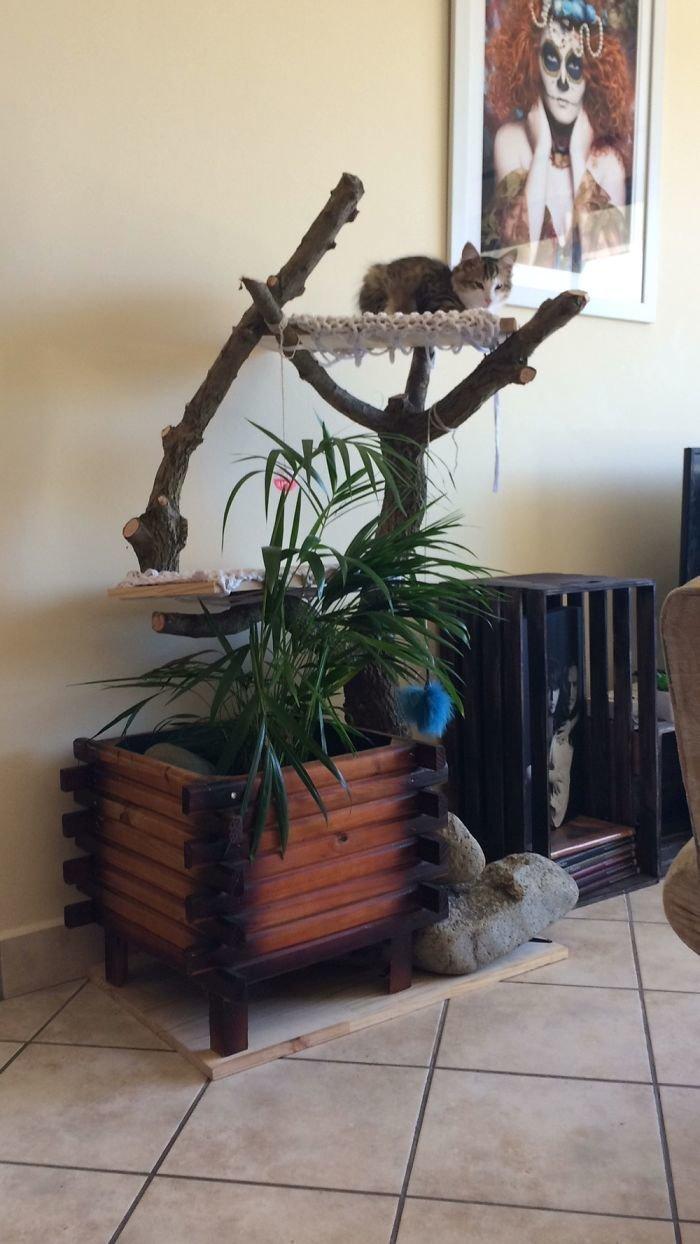 10. Игровой комплекс для кота  идея, креатив, мастер, самоделки, своими руками, сделай сам, фото