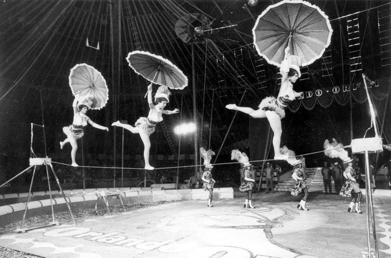 "10. Цирк ""Althoff"" акробатки, гибкие, гимнастки, девушки, красиво, фото, цирк, циркачки"
