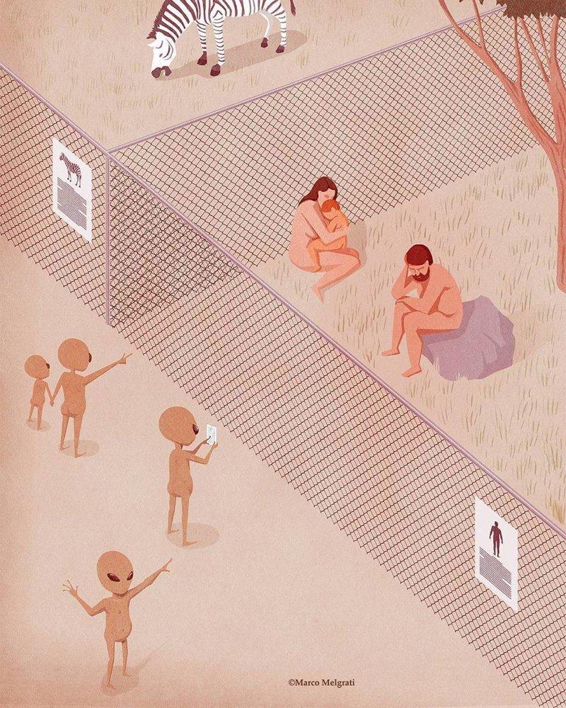 Зоопарк иллюстрация, рисунок, современный мир, художник