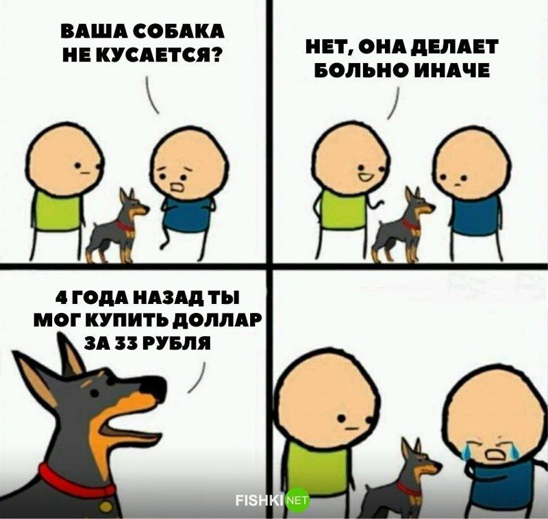 12. картинки для настроения, крах рубля, олигархи, падение рубля, рубль упал, санкции, смешно