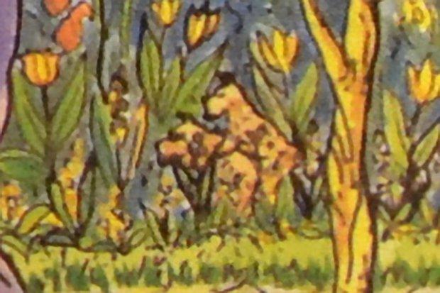 И собаки в кустах  внимательность, головоломка, картинка, наблюдательность, отличие, сравнение, тест