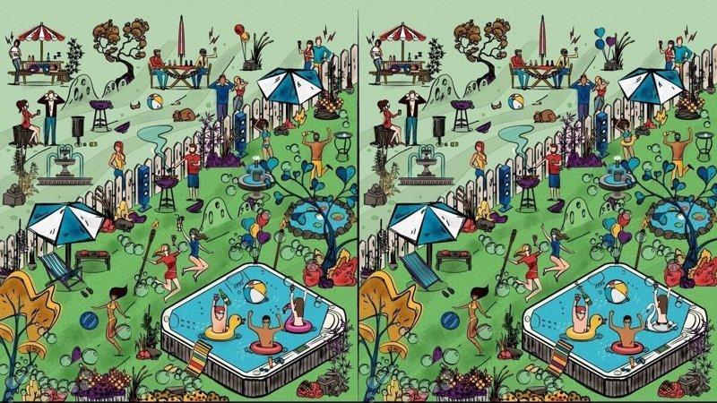 Найдите 8 отличий на картинках  внимательность, головоломка, картинка, наблюдательность, отличие, сравнение, тест