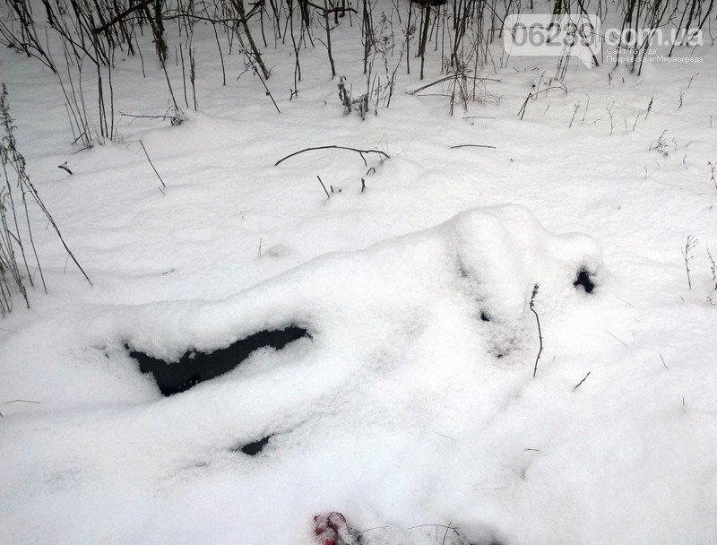 Еще подснежниками на полицейском сленге называют трупы, оттаявшие из-под снега весна, вскрывает, интересное, подснежник, факты