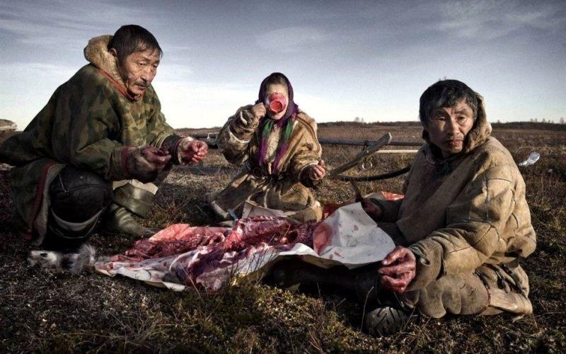 Смертельно опасная еда, которую употребляют люди еда, отрава., факты