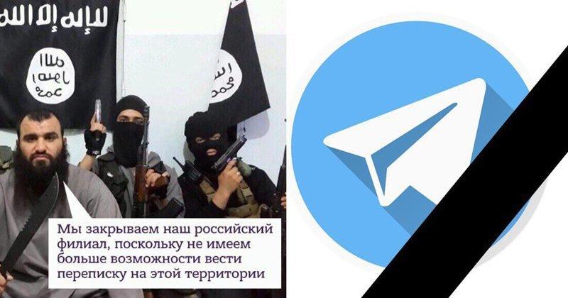 Мировой терроризм повержен: реакция соцсетей на блокировку Telegram Telegram, дуров, мессенджер, реакция соцсетей, роскомнадзор, россия, юмор
