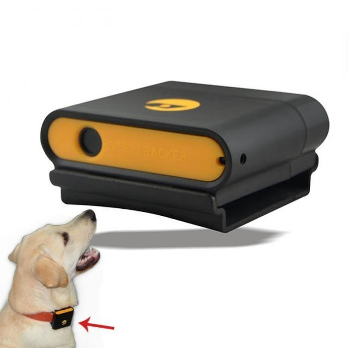 9. Еще один GPS-трекер для животных GPS, aliexpress, gps-трекер, гаджет, магазин, покупки, путин