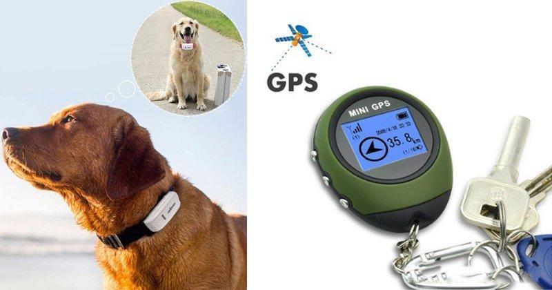 GPS-трекеры с AliExpress, которые неожиданно стали законными GPS, aliexpress, gps-трекер, гаджет, магазин, покупки, путин