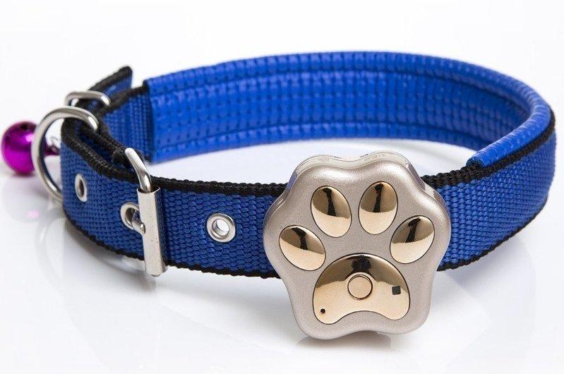 8. Ошейник для собаки с GPS-трекером GPS, aliexpress, gps-трекер, гаджет, магазин, покупки, путин