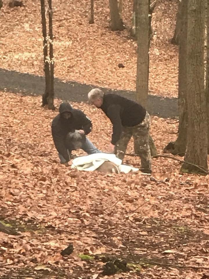 Мужчина заметил странное существо и тут же вызвал спасателей животные, история, спасение