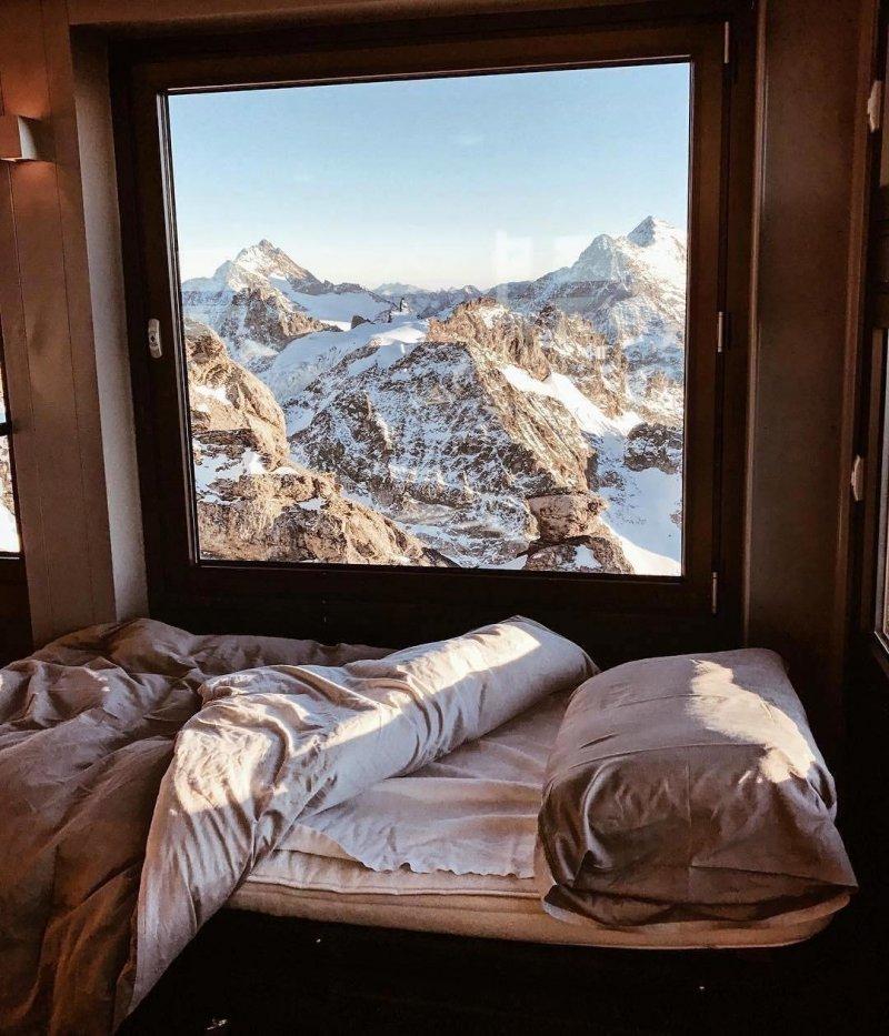 Спальня с прекрасным видом день, животные, кадр, люди, мир, снимок, фото, фотоподборка