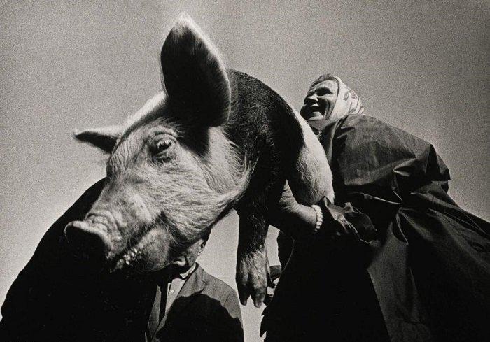 Александрас Мацияускас входит в список лучших литовских фотографов. Он ездил в отдаленные места страны, чтобы запечатлеть жизнь там во всех ее проявлениях. Этот снимок называется «На рынке» кадр, картина, люди, фото, фотограф, художник