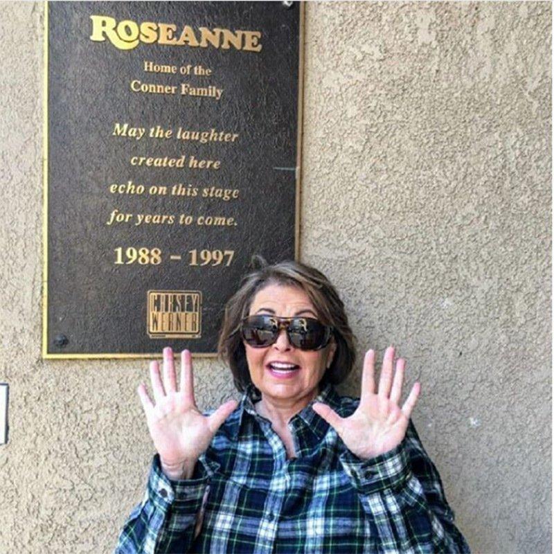 Розанна Барр  звезды, знаменитости, мама, материнство, ребенок, фото, юность