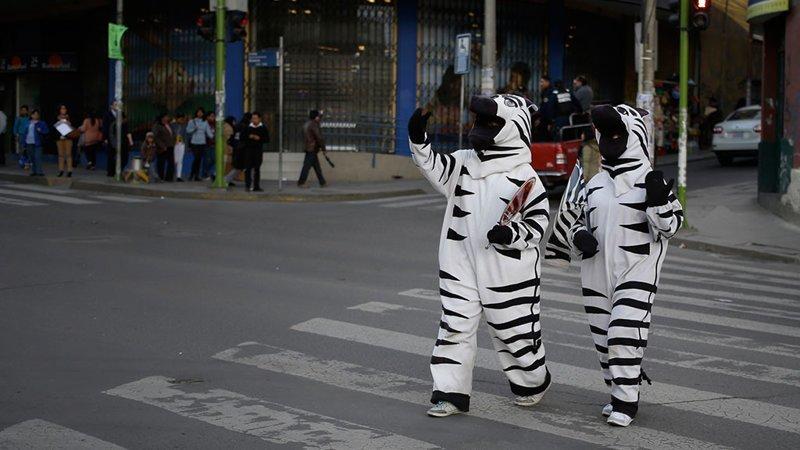 Человек-зебра, Боливия занятия, необычные специальности, профессии, факты, это интересно