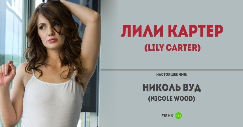 Всё правда о порно актрис россии