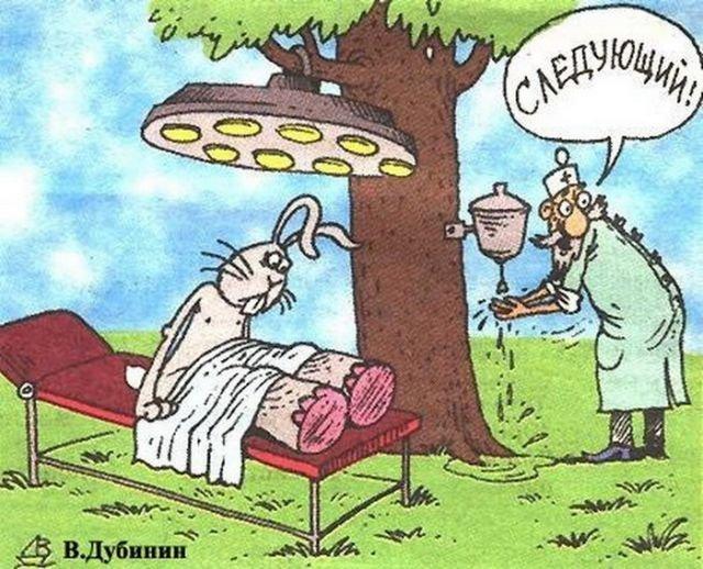 ветеринарный юмор картинки верхних