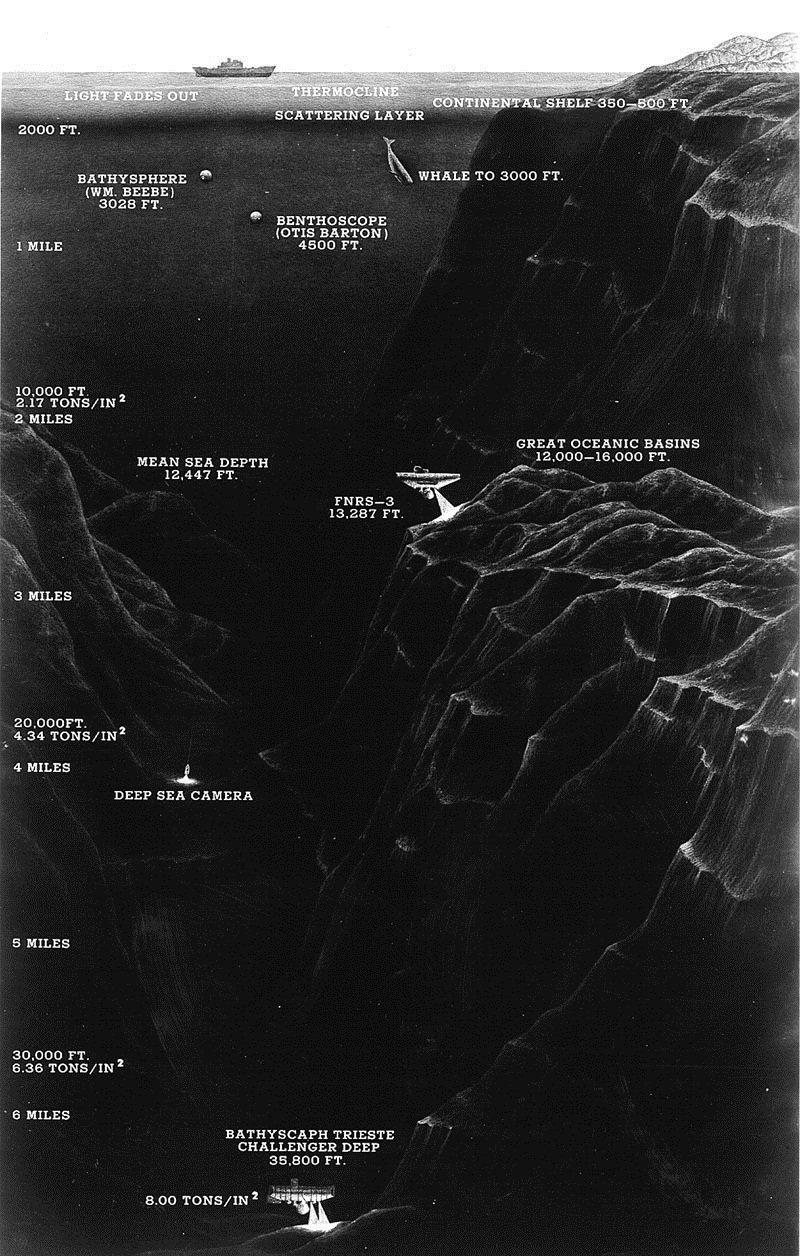 И подробнее об исследовании Марианской впадины батискаф, впадины, загадки, земля, интересное, океан, факты