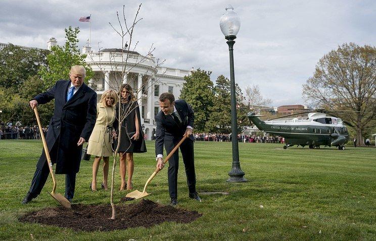 Оригинальное фото, с которого все и началось Макрон, Трамп, прикол, фотошоп, юмор