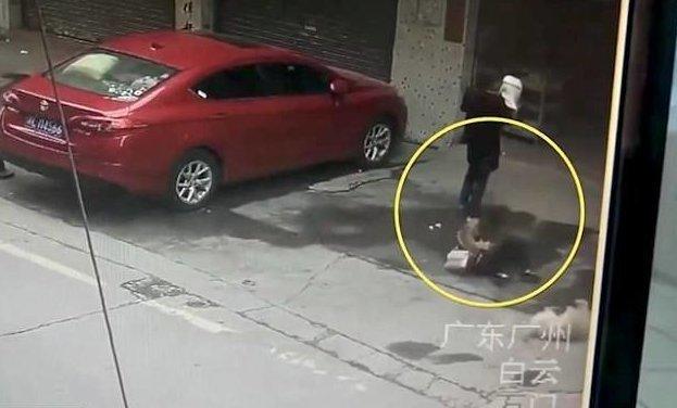 Собака, упавшая из окна, покалечила прохожую Гуаньчжоу, история, китай, неожиданно, падение с высоты, происшествие, собака, шок
