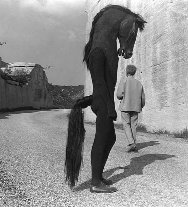 "Мужчина в костюме лошади, Греция, 1961 год. (""Да, чёт взгрустнулось..."") история, черно-белая фотография, юмор"
